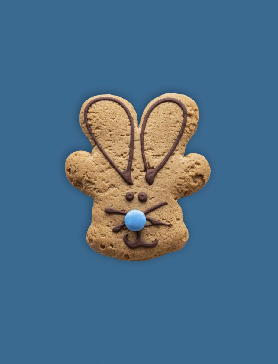 Easter bunny childrens cookie biscuit